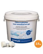 Chloortabletten - Interline Long 90 Mini - 20 gram (2,5 kg)